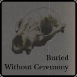 BWC-Site-Icon